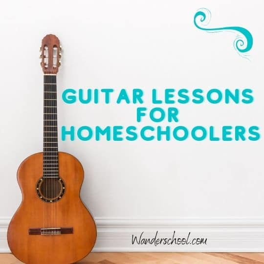 guitar lessons for homeschoolers online nyc new york city