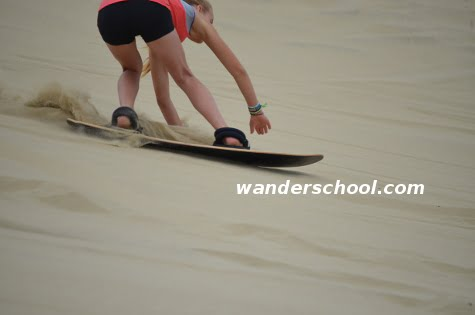 sandboard homeschool