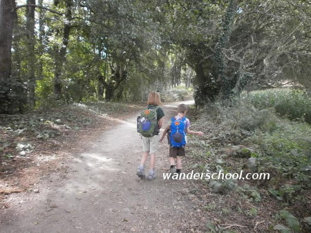 camino safe kids