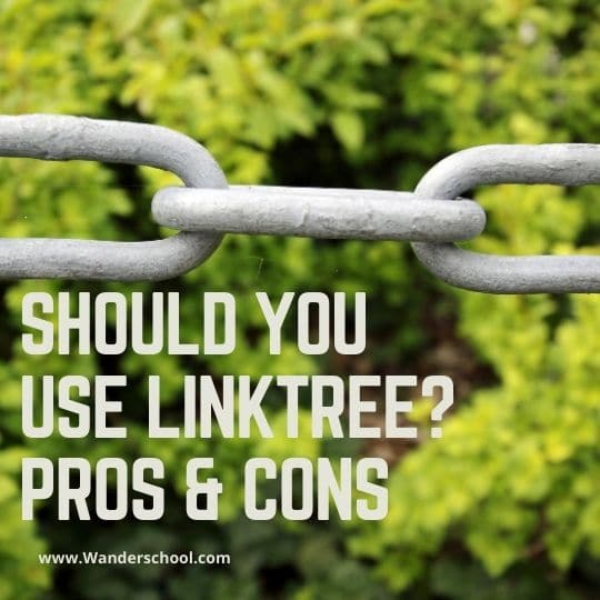 should you use linktree pros and cons instagram