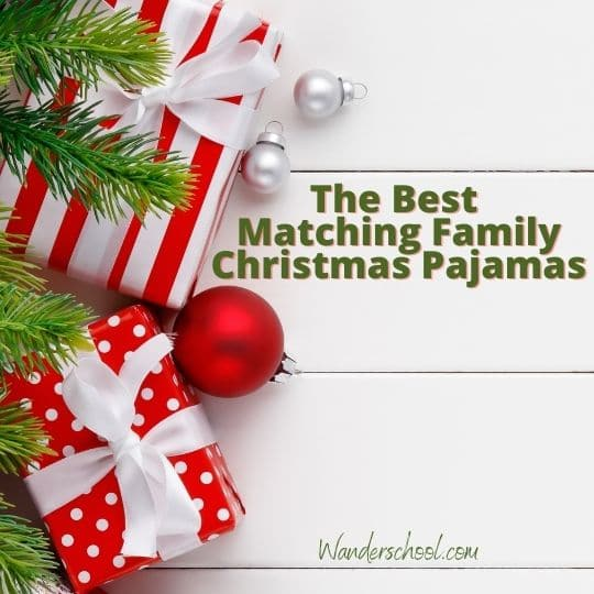 the best matching and coordinated pajamas for families this holiday