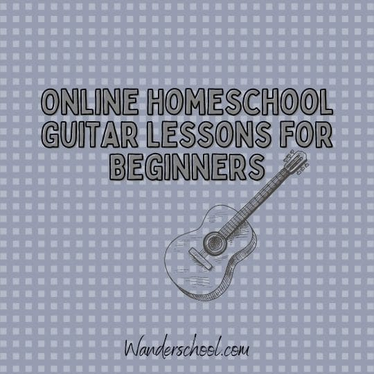 online homeschooler guitar lessons for beginners